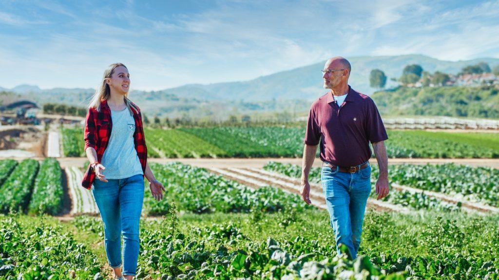 solutions alimentation environnement